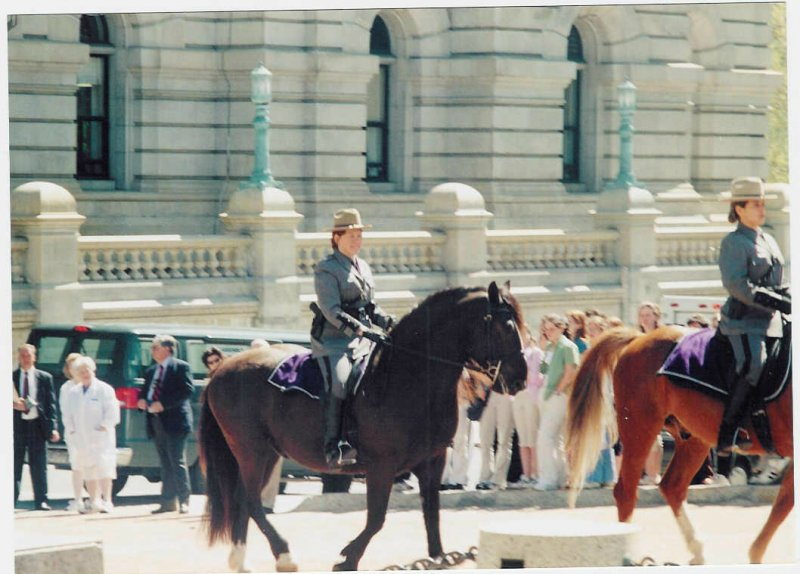 Governors Parade-Albany