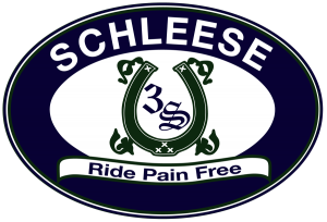 Schleese Logo - transparent background